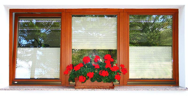 lesena okna